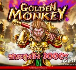 สล็อต Golden Monkey TS911